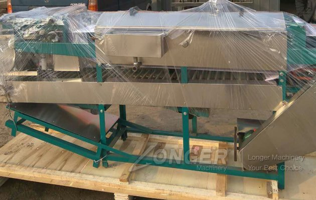 Rice Noodle Machine Sold to VietNam